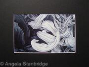 Tulipmania 11 - Print Black Mount