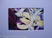 Tulipmania 11 - Print Blue Mount