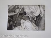Tulipmania 19 - Etching #1