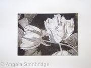 Tulipmania 3 - Etching #1