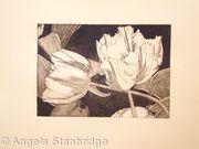 Tulipmania 3 - Etching #2