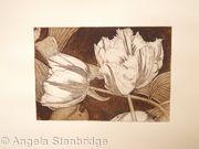 Tulipmania 3 - Etching #3