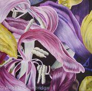 Tulipmania 23 - SOLD