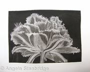 Cool Cystal Aquatint Etching B/W