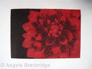 Dahlia1 red