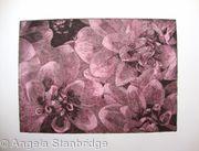 Dahlia 2 pink