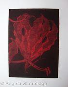 Gloriosa red