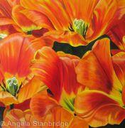 Mystic Garant Tulip