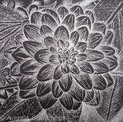 B/W Dahlia Flower 5