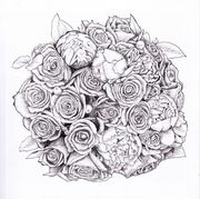 Bridal Bouquet Black And White Pen And Ink 3