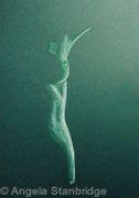 Nude 19 - Green