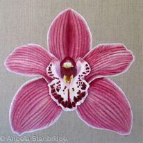 Orchid Summer Geyser Candy