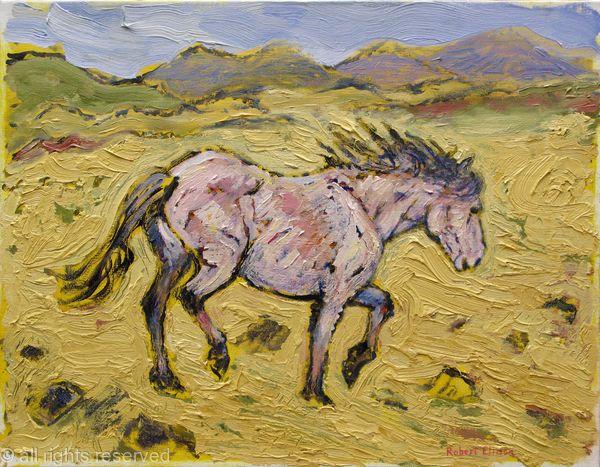 Connemara Pony Horn Head