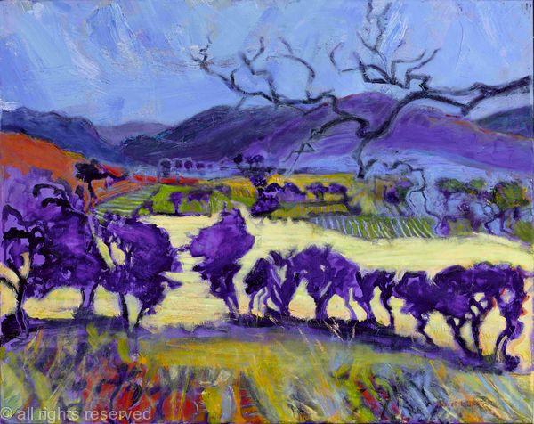 Mourne Landscape
