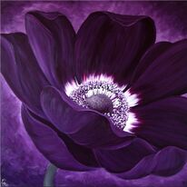 Purple Passion I