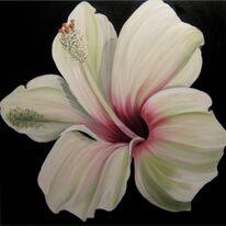 Spanish Hibiscus II