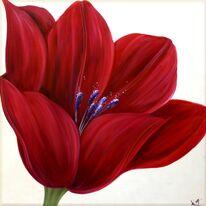 Crimson Tulip