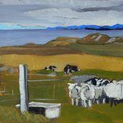 Iona Sheep Farmer