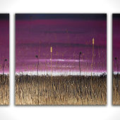 Infustion Triptych