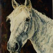 Robby's Pony