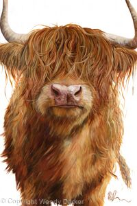 Haggis Highland