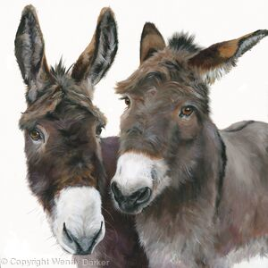Two Nice Donkeys