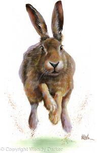 Dashing Hare