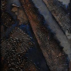 BLUE ORIENT