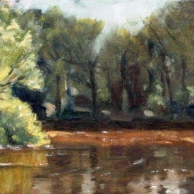 The Big Pond, Baddesley Clinton