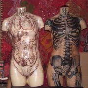 Life Size Anatomical Body Wall Hanging Decoupage Paper Mache by Kuriology