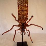 Insect Specimen Paper Mache by Kuriology