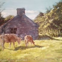 Stone shed and Cattle