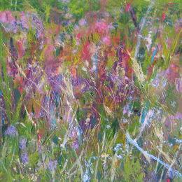 Tanera Meadow