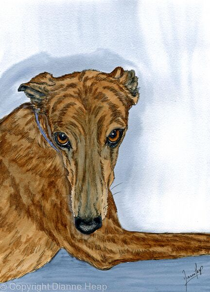 WHO ME?  No.6528 Original Painting