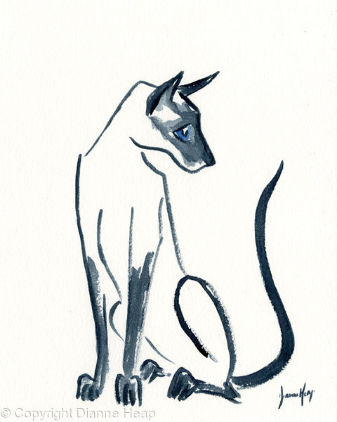 CURIOUS CAT  No. 7007