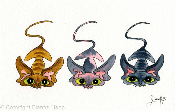 3 LITTLE SPHYNX CATS No.6650