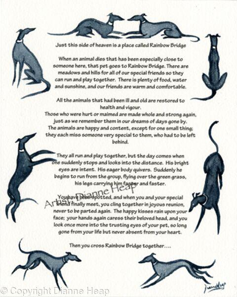 CONDOLENCE POEM No.7032 Greyhound Whippet