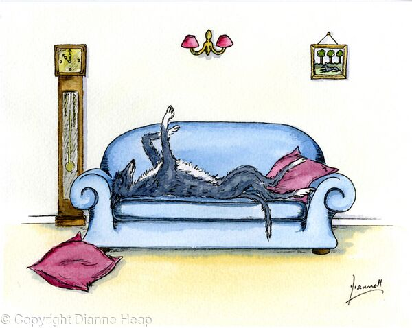 COUCH POTATO No.5853 Dog on Sofa