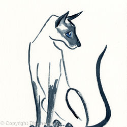CURIOUS CAT  No. 7007