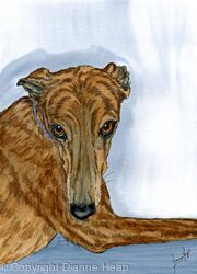 WHO ME?  No.6528 Original Painting