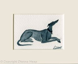 Hound ACEO 7171 Greyhound Lurcher Dog