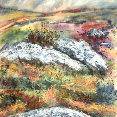 Rocks and Gorse on Dartmoor