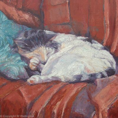 Billy Sleeping