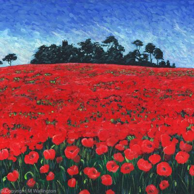 Poppies on Folly HIll