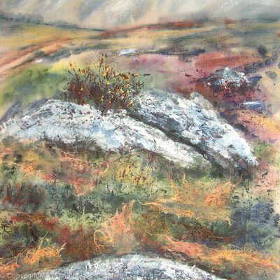 Rocks and Gorse on Dartmoor