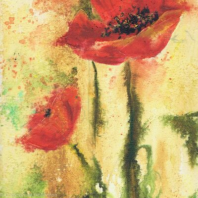Red Poppies I