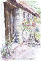 Foxgloves by the Barn Door