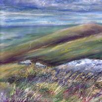 Buzzards over Dartmoor