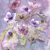 Anemones in the Mist