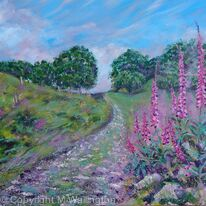 Wild Foxgloves by the Track